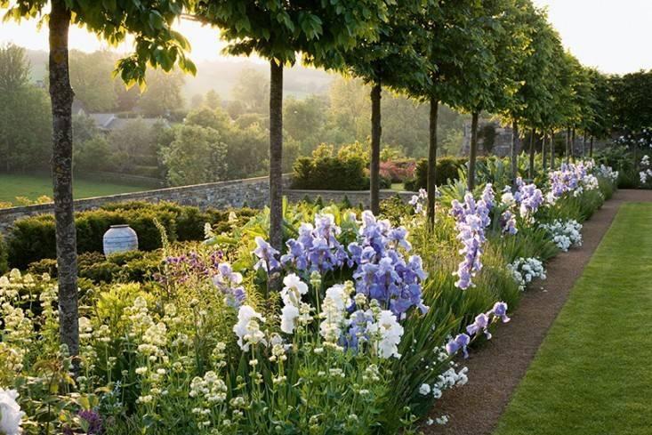 example of english garden landscaping